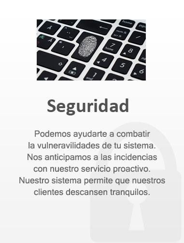 Seguridad 4.4